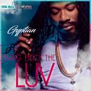 Bring Back The LUV (Single) thumbnail