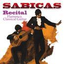 Recital - Flamenco Classical Guitar thumbnail