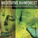 Meditative Rainforest thumbnail
