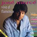 Vive El Flamenco: Bulerias - Seguiriyas - Fandangos - Tientos - Tangos thumbnail
