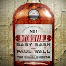 Unforgivable (feat. Paul Wall) thumbnail