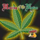 Healing Of The Nation - Volume 2 thumbnail