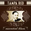 Essential Blues thumbnail