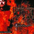 Down In Flames thumbnail