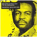 Fighting Dub 1975-1979 thumbnail