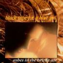 Ashes In The Brittle Air thumbnail