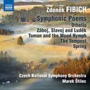 Zdenek Fibich: Orchestral Works, Vol. 3 thumbnail