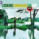 Looking Towards The Sky - Progressive, Psychedelic & Folk Rock From The Ember Vaults thumbnail
