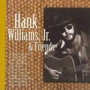 Hank Williams, Jr. & Friends thumbnail