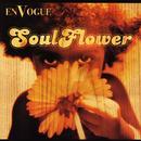 Soul Flower thumbnail