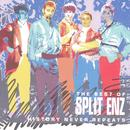 History Never Repeats (The Best Of Split Enz) thumbnail