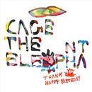 Thank You Happy Birthday thumbnail