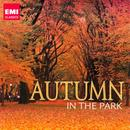 Autumn In The Park thumbnail