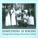 Something Is Wrong: Vintage Recordings From East Africa thumbnail