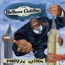 Prozac Nation thumbnail