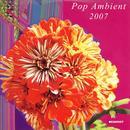 Pop Ambient 2007 thumbnail