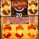 20 Corridos Y Nortenas De Arranque thumbnail