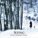 If On A Winter's Night... thumbnail