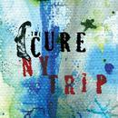 NY Trip (Radio Single) thumbnail