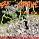 Back From The Grave, Vol. 3 thumbnail