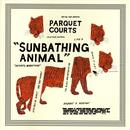 Sunbathing Animal thumbnail
