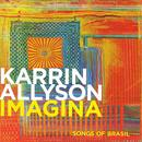 Imagina: Songs Of Brazil thumbnail