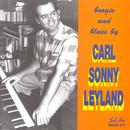 Boogie And Blues By Carl Sonny Leyland thumbnail