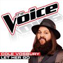 Let Her Go (The Voice Performance) (Single) thumbnail