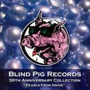 Blind Pig Records: 30th Anniversary Collection thumbnail