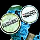 101 Things To Do In Bongolia thumbnail