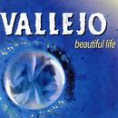 Beautiful Life thumbnail