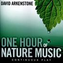 One Hour Of Nature Music thumbnail