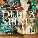 Delta Spirit thumbnail
