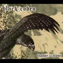 Feather And Stone thumbnail