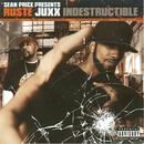 Indestructible (Explicit) thumbnail