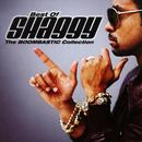 The Boombastic Collection: Best Of Shaggy thumbnail