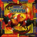 Duelo De Sonoras thumbnail