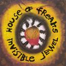 Invisible Jewel thumbnail