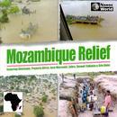 Mozambique Relief thumbnail