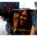 Dreams Of Freedom: Ambient Translation Of Bob Marley In Dub thumbnail
