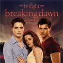 The Twilight Saga: Breaking Dawn, Pt. 1 thumbnail
