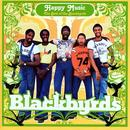 Happy Music: The Best Of The Blackbyrds thumbnail