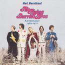 Hot Burritos! The Flying Burrito Brothers Anthology 1969-1972 thumbnail