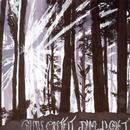 Dim Light thumbnail