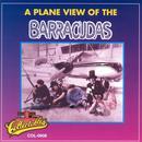 Plane View Of The Barracudas thumbnail