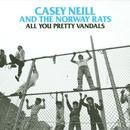 All You Pretty Vandals thumbnail