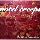 The Gifts Of Happenstance thumbnail